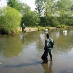 7-entretien-de-cours-d'eau-ou-d'étangs-100_0013